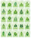 leaf icon - vector icon set