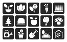 Silhouette Different Plants and gardening Icons - vector icon set